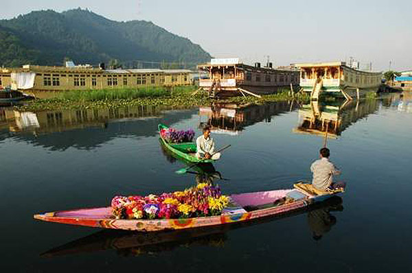 picture of kashmir flower market, cheap airfare to kashmir,