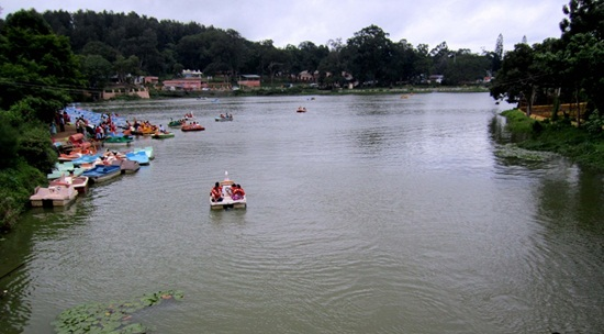 Yercaud sightseeing, best hill stations in south India, things to see in south India