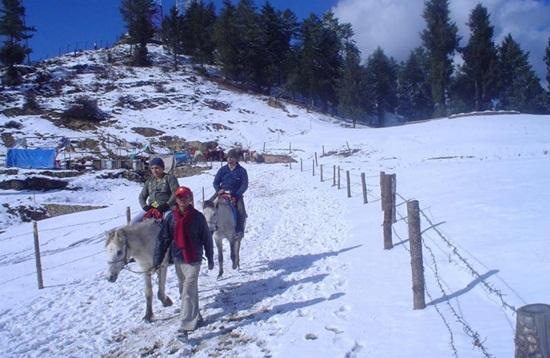camping in himalayas, hill stations of himachal pradesh, adventure in hiamalayas