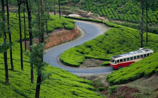 best green ecotourism hubs in India, popular road trips in India, how to travel green