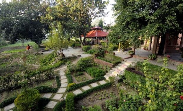 best yoga retreats in India, yoga destination India, IndianEagle travel ideas
