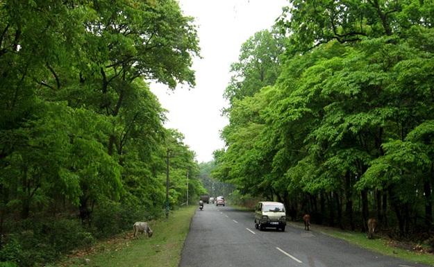Road trips in Darjeeling, Kalimpong to Siliguri road trip