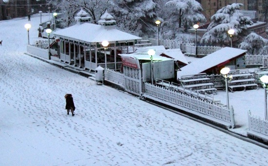Shimla tourist attractions, things to see in shimla, Indian Eagle travel