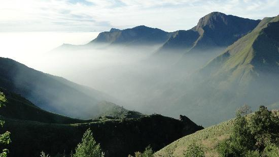 things to see in munnar, south indian hill stations, munnar tourism guide
