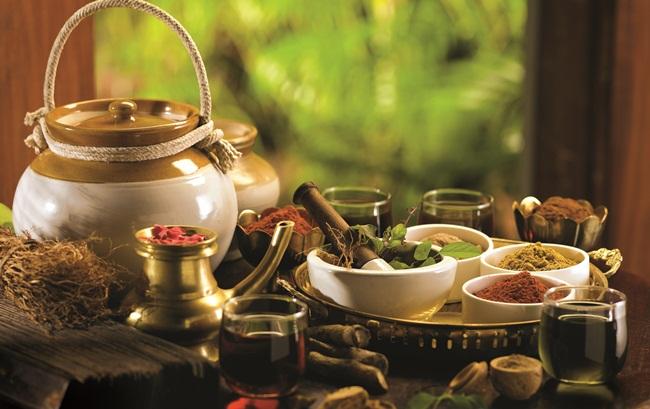 kerala ayurveda, why visit kerala in monsoon, kerala tourism