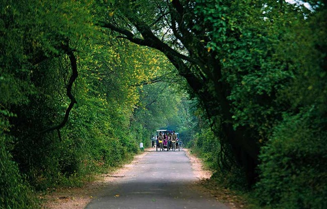 road trip to Bharatpur from delhi, weekend road trips from delhi, IndianEagle booking