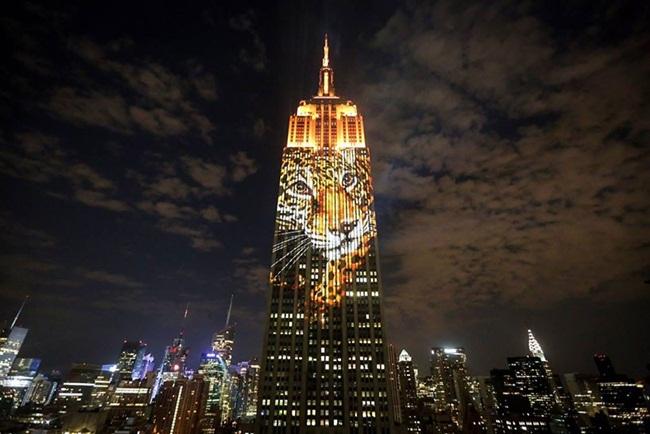 New York news, Empire estate building artwork, Goddess Kali in New York, Indian Eagle
